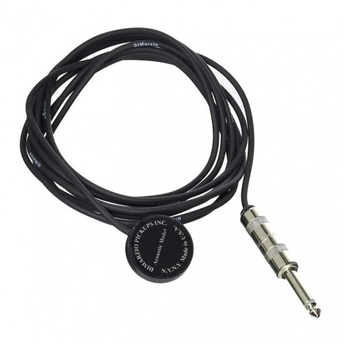 BK BOOTCAMP STRAT BRUTE FORCE NECK